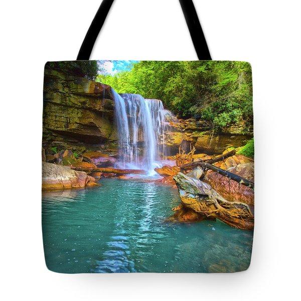 Douglas Falls 2 Tote Bag