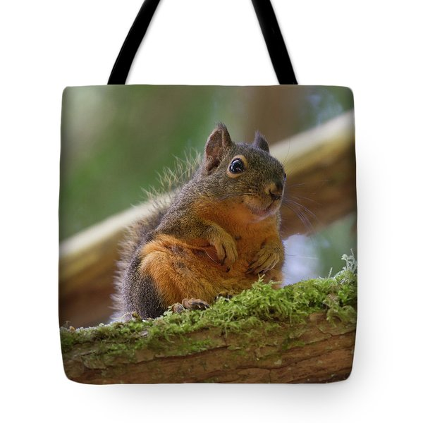 Douglas Squirrel Tote Bag