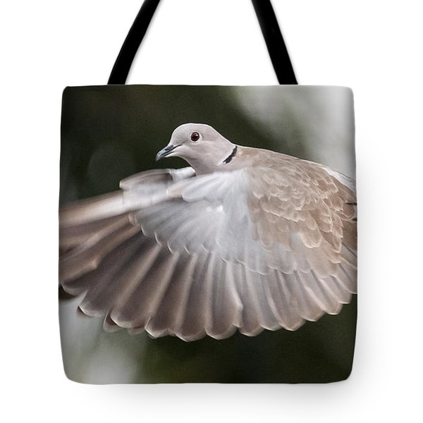 Tote Bag featuring the photograph Dove Flight by Don Durfee