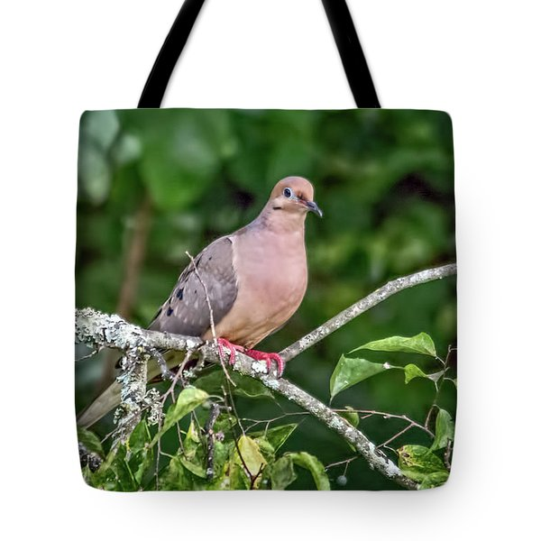 Dove On A Branch Tote Bag