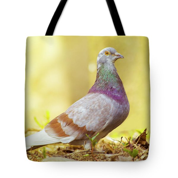 Dove  Standing Close Up Tote Bag