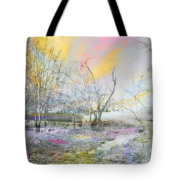 Dovedale In Winter Tote Bag