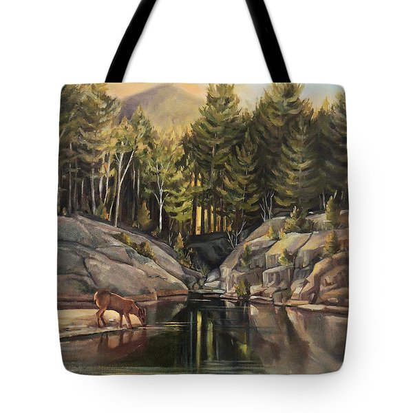 Down By The Pemigewasset River Tote Bag by Nancy Griswold