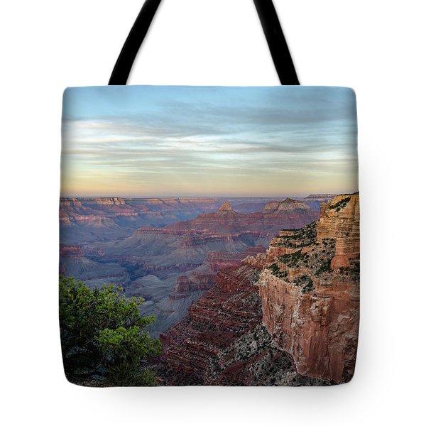 Down Canyon Tote Bag
