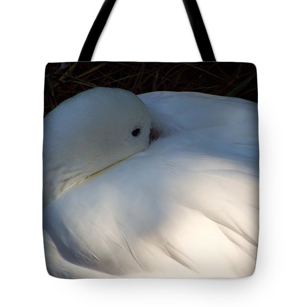 Down For A Nap Tote Bag by Karen Wiles