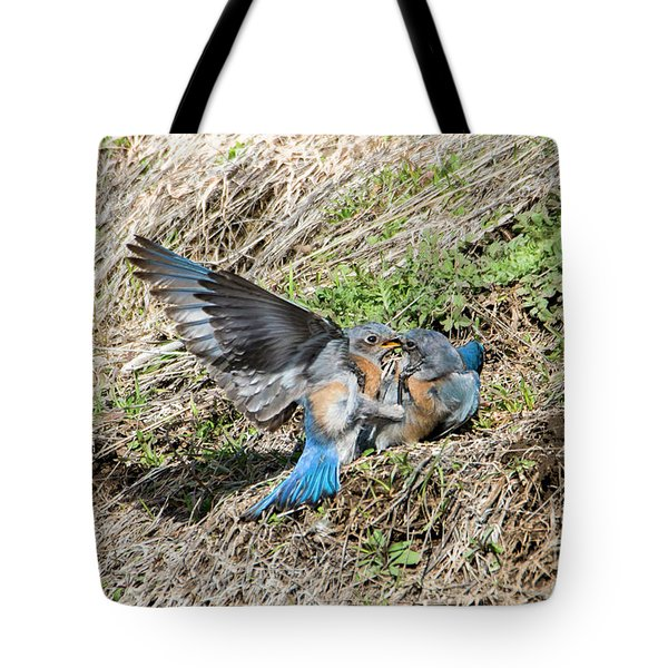 Tote Bag featuring the photograph Down For The Count by Mike Dawson