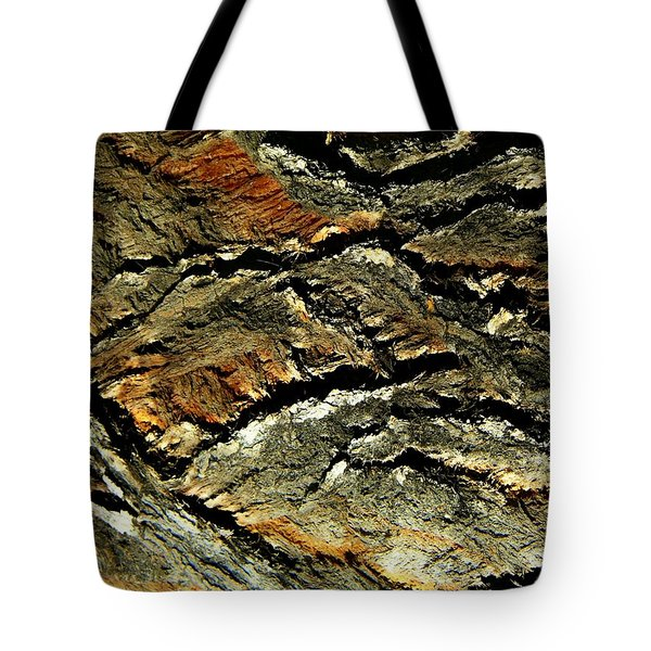 Tote Bag featuring the photograph Down In The Valley by Lenore Senior