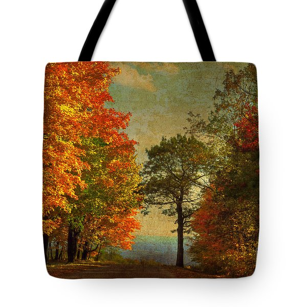 Down The Mountain Tote Bag by Lois Bryan