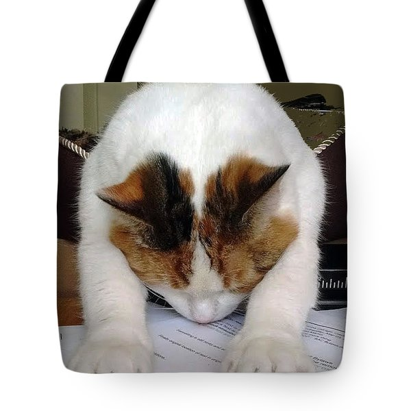 Tote Bag featuring the photograph Downward Facing Cat  by Bill Thomson