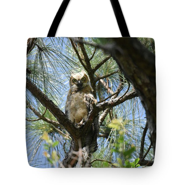 Tote Bag featuring the photograph Downy Chested Owlet by Sally Sperry