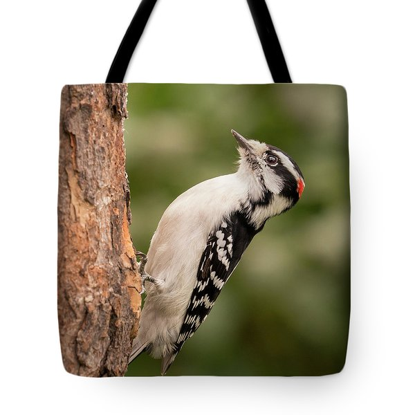 Downy Woodpecker In Minnesota Tote Bag by Jim Hughes