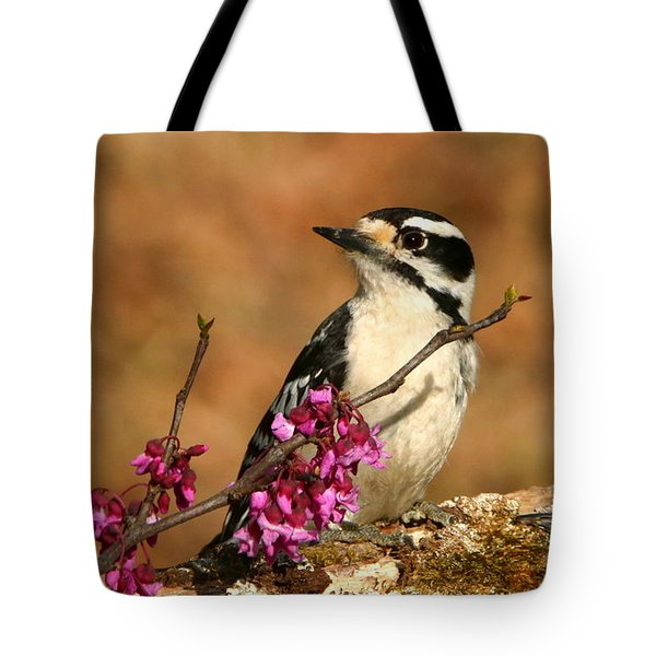 Downy Woodpecker In Spring Tote Bag by Sheila Brown