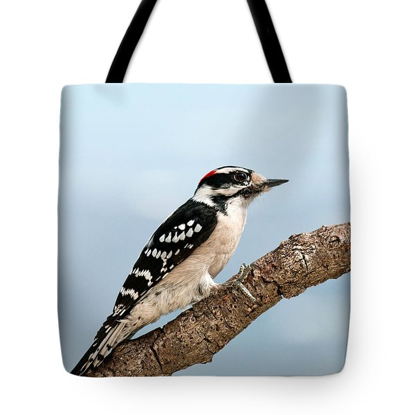 Downy Woodpecker Spring 2016 1 Tote Bag