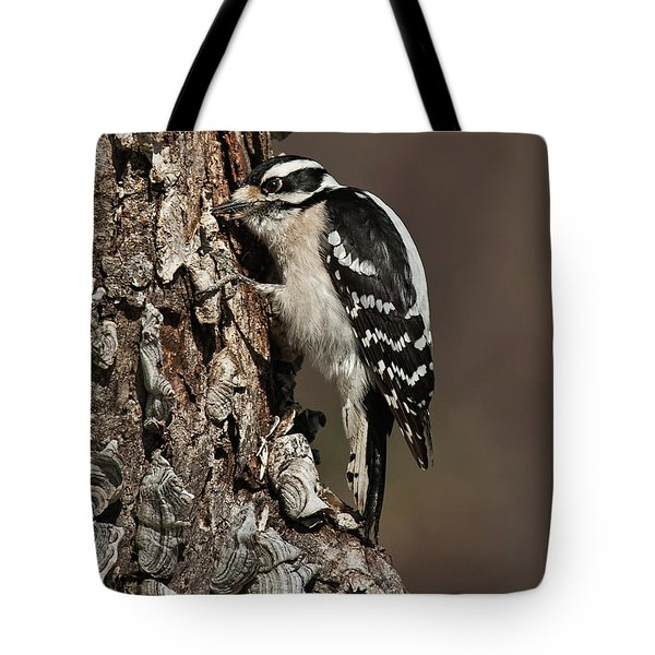 Downy Woodpecker's Secret Stash Tote Bag by Lara Ellis