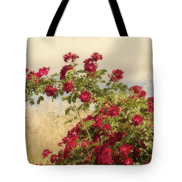 Tote Bag featuring the photograph Dr. Huey by Elaine Teague