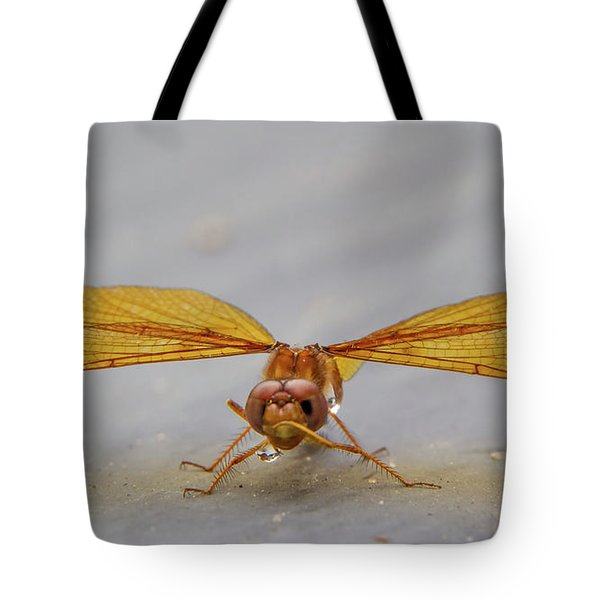 Dragon Fly Hanging Around Tote Bag