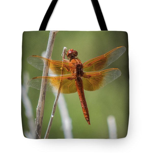 Dragonfly 10 Tote Bag