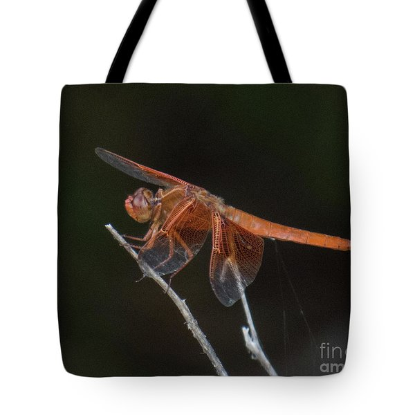 Dragonfly 11 Tote Bag