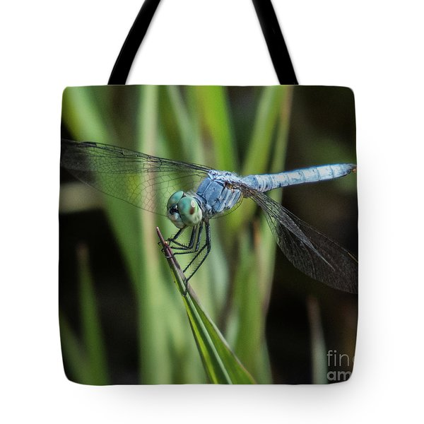 Dragonfly 13 Tote Bag