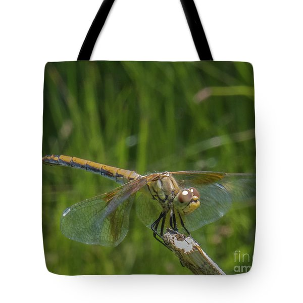 Dragonfly 7 Tote Bag