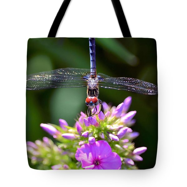 Dragonfly And Phlox Tote Bag by Kathy Eickenberg