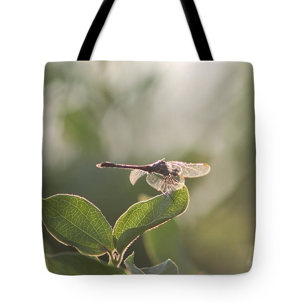 Dragonfly Basking In The Twilight Tote Bag by Robert Banach