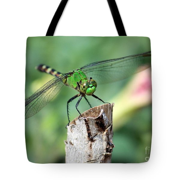 Dragonfly In The Flower Garden Tote Bag by Carol Groenen