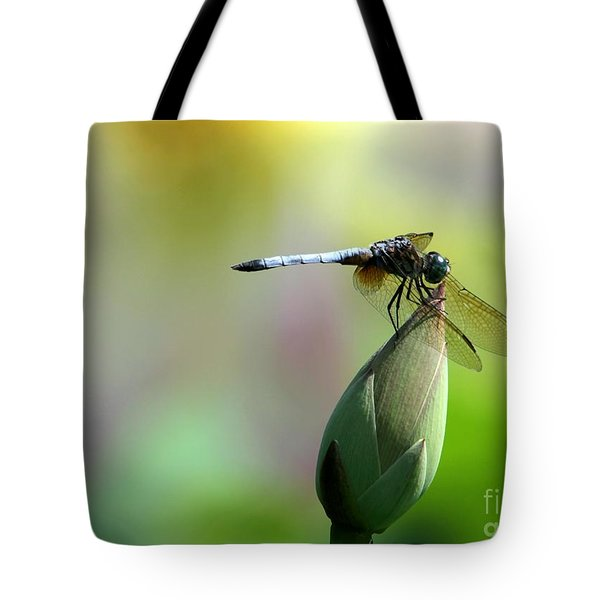 Dragonfly In Wonderland Tote Bag by Sabrina L Ryan