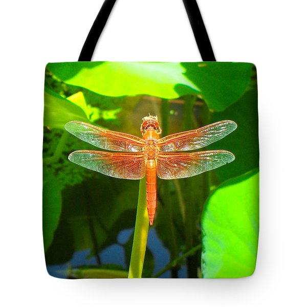Dragonfly Tote Bag by Mark Barclay