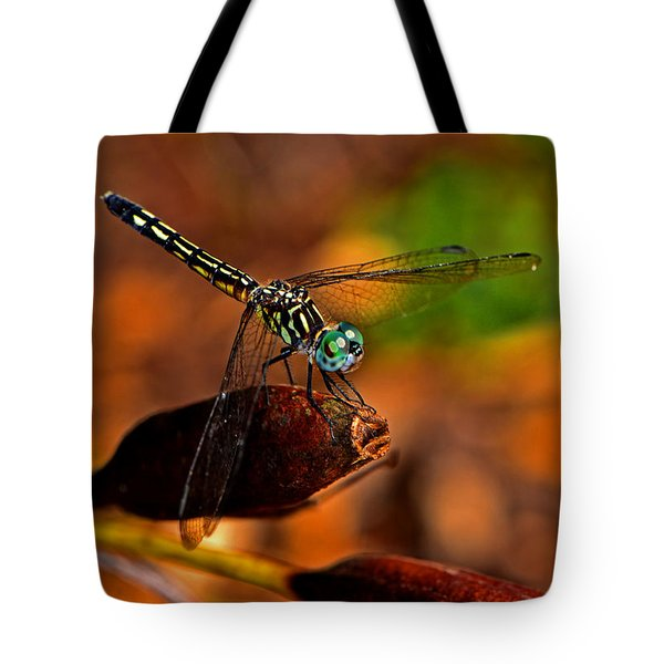 Tote Bag featuring the photograph Dragonfly On A Flower Pod 002 by George Bostian