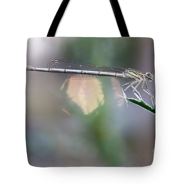 Tote Bag featuring the photograph Dragonfly On Leaf by Michal Boubin