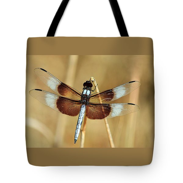 Tote Bag featuring the photograph Dragonfly On Reed by Sheila Brown