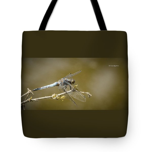 Tote Bag featuring the photograph Dragonfly On The Spot by Stwayne Keubrick