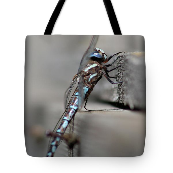 Dragonfly Pause Tote Bag by Cathie Douglas