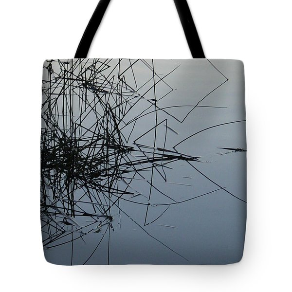 Dragonfly Reflections Tote Bag
