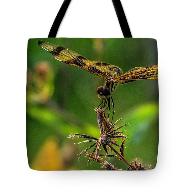 Dragonfly Resting On Flower Tote Bag