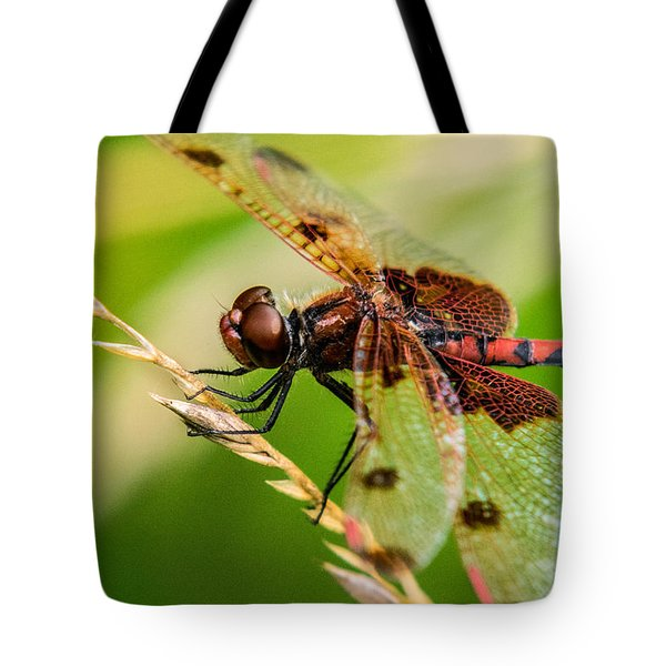 Dragonfly Resting On Grass Seed Tote Bag