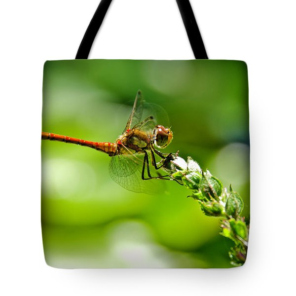 Dragonfly Sitting On Flower Tote Bag