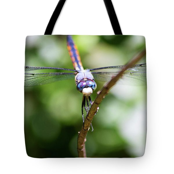 Dragonfly Watching Tote Bag