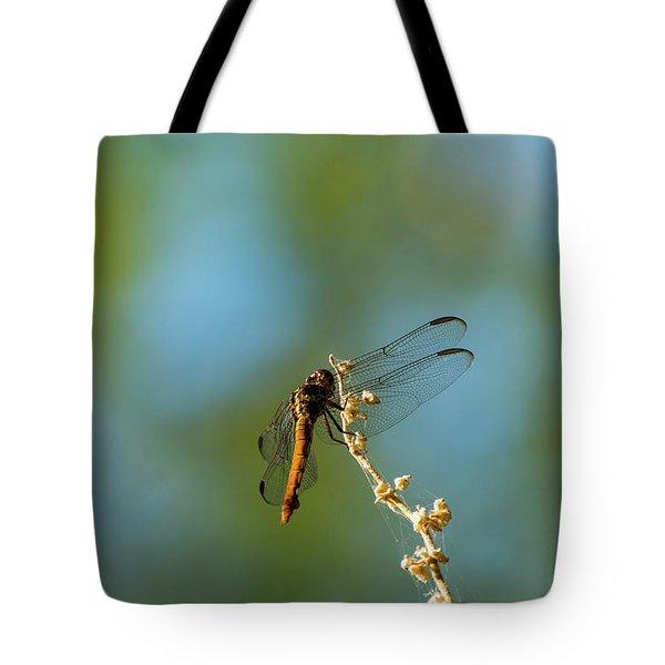 Dragonfly Wings Tote Bag