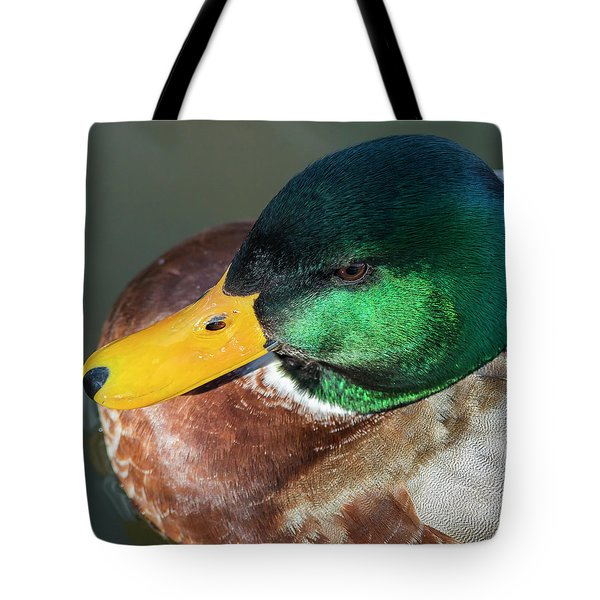 Tote Bag featuring the photograph Drake by Mark Mille