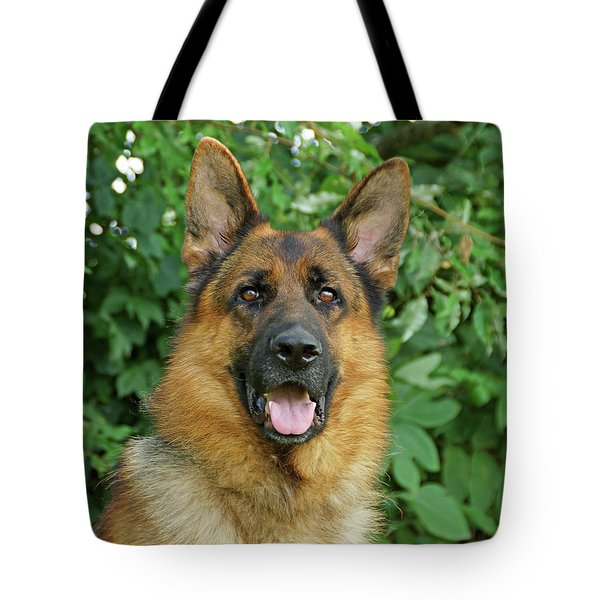 Tote Bag featuring the photograph Drake by Sandy Keeton