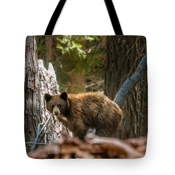 Tote Bag featuring the photograph Drakesbad Wakeup by Jan Davies