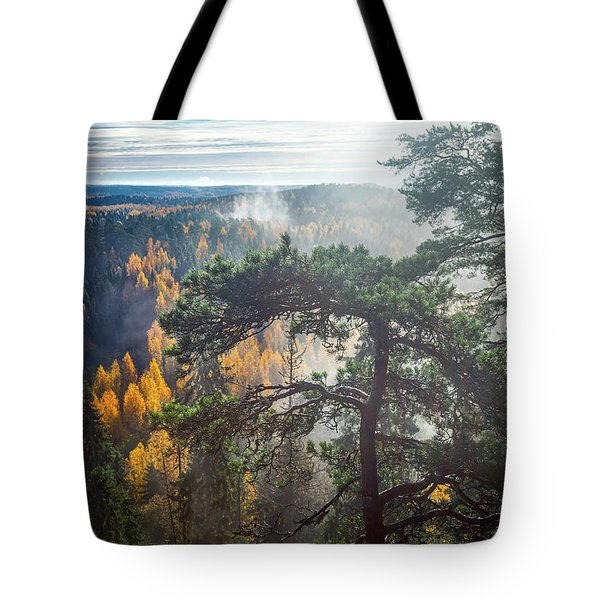 Dramatic Autumn Forest With Trees On Foreground Tote Bag by Teemu Tretjakov