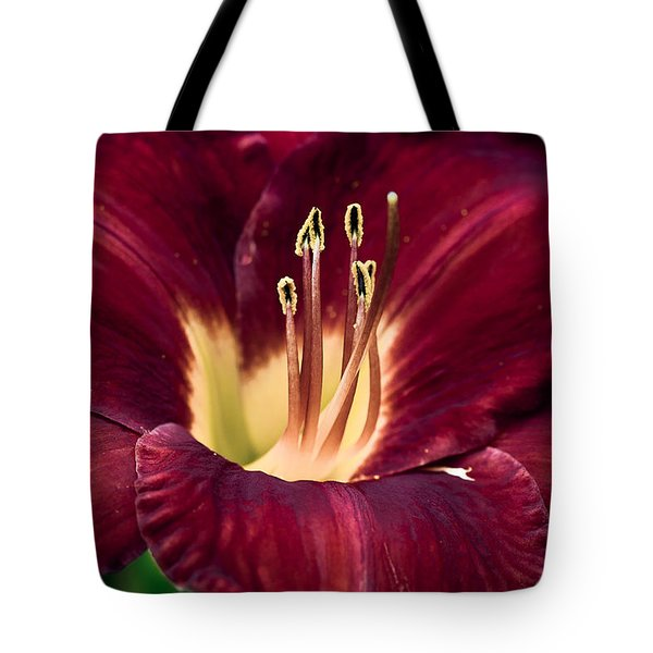 Dramatic Lily Tote Bag
