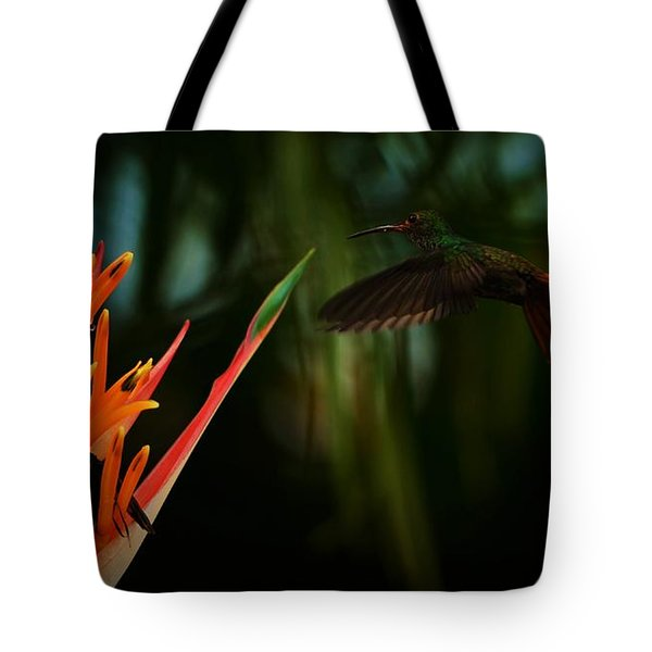Drawn To Beauty Tote Bag by Pamela Blizzard