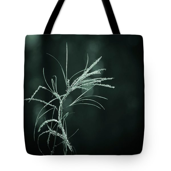 Tote Bag featuring the photograph Dream Catcher by Mary Amerman