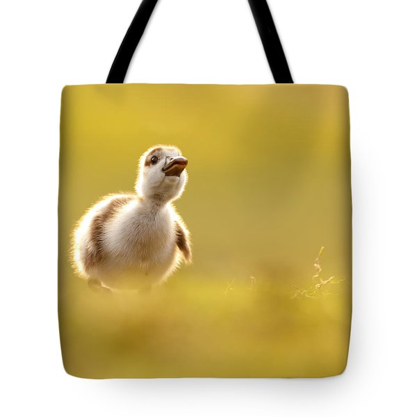 Dream Duckie _egyptian Gosling Tote Bag