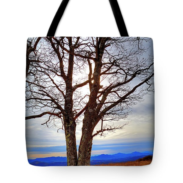 Dreamcatcher Tote Bag by Dale R Carlson