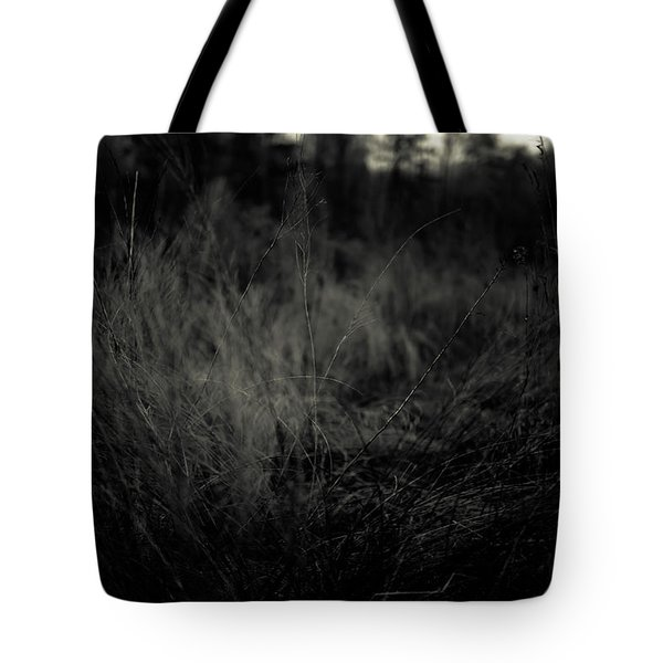 Tote Bag featuring the photograph Dreaming In by Shane Holsclaw